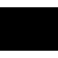 245-1008016 Прокладка колектора під ТКР-6